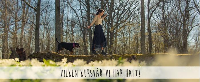 bannerbild_kursvåren_17
